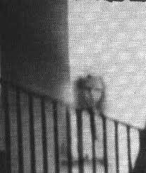 fantasma-casa