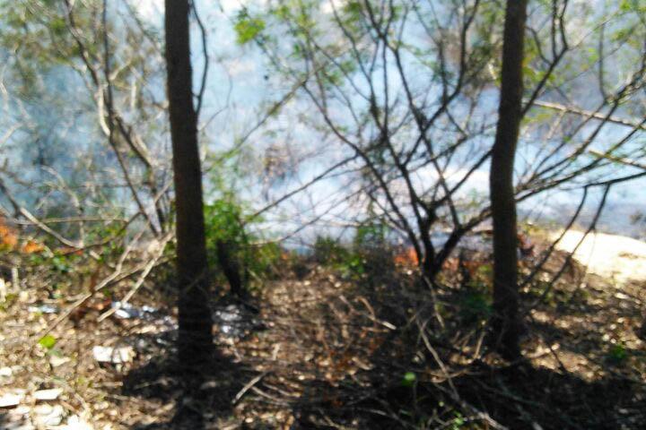 Incêndio atinge vegetação em dunas de Ingleses