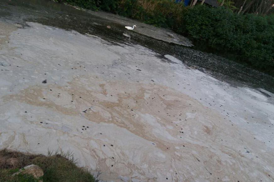 Espuma branca no Rio do Brás